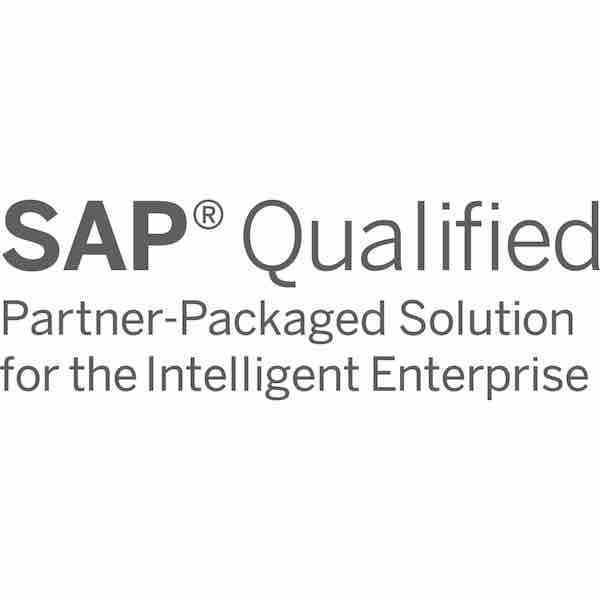 SAP-Qualified Partner-Packaged Solution (small)